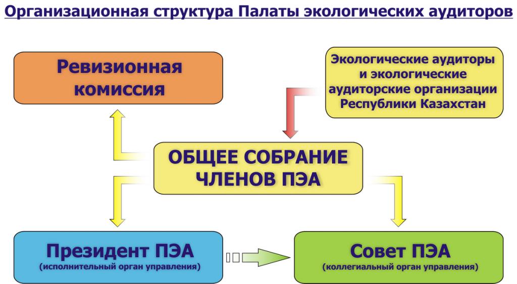 Организационная структура управления ПЭА